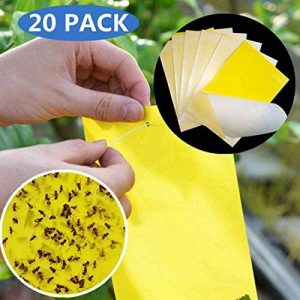 20PCAK jaunes pièges à insectes Pièges Collants Conseil pour Moustiques Pucerons Mineuses de mouches, les pucerons, mineur, mites et moisissures Moucherons pièges à mouche tiges de fixation FLY TRAP de la marque TIANOR image 0 produit