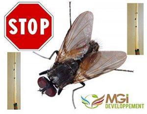 8 rouleaux anti-mouches d'intérieur - qualité professionnel agricole - Attrape les mouches - Non toxic de la marque MGI DEVELOPPEMENT image 0 produit