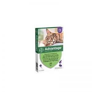 Advantage 80 Chat/Lapin 4-10 kg 4 pipettes antiparasitaires de la marque Bayer image 0 produit