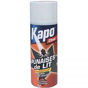 Aérosol punaise de lit foudroyant - 400 mL de la marque Kapo image 0 produit