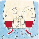 Aic 02223 Piège à Guêpe en Verre Rouge/Bleu Lot de 2 de la marque ICA image 3 produit