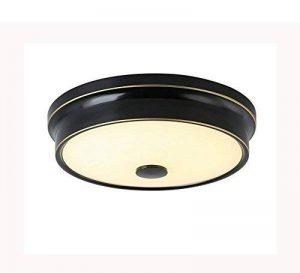 American Style Iron Art LED chambre d'enfant plafonnier moderne circulaire chambre balcon allée anti-moustique lampe personnalité mode salon lampe d'apprentissage (trois couleurs de changement de lumière) ( taille : 42cm 48w ) de la marque BLLz&Xdd image 0 produit