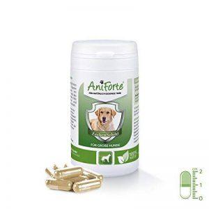 AniForte Tique Bouclier - Anti Tiques 60 Capsules pour gros chiens, Anti-parasitaire, Naturel, Tuer, Prévenir et Contrôler de la marque AniForte image 0 produit