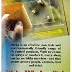 anti mouche fenêtre TOP 2 image 4 produit