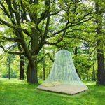 anti moustique intérieur naturel TOP 8 image 1 produit
