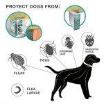 anti moustique pas cher TOP 5 image 1 produit