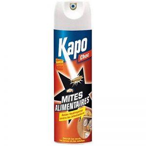 Aérosol Foudroyant Mites Alimentaires - KAPO 304894 de la marque Kapo image 0 produit