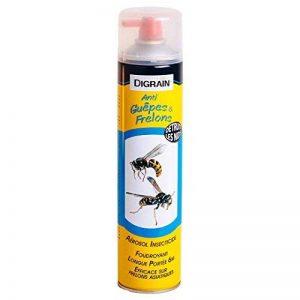 Aérosol insectiside à effet choc foudroyant Digrain produit Anti-Guêpes et Frelons (600 ml) de la marque Digrain image 0 produit