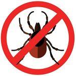Autan Protection Plus Spray Multi Protection anti-insectes 100ml–Protège jusqu'à 8heures contre les moustiques, jusqu'à 5heures avant piquent voler comme par exemple freins (Lot de 5) de la marque Autan image 3 produit