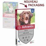 Bayer Advantix Grand Chien 25 à 40 kg- 4 pipettes antiparasitaires 4 ml de la marque Bayer image 1 produit