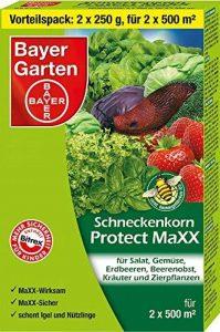 Bayer Jardin Protect Maxx anti-limaces, bleu, 500g de la marque Bayer image 0 produit