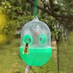 Beetest Piège à Guêpes, 2 PCS Réutilisable Guêpe Abeille Piège Tueur Insecte Catcher Pest Control Répulsif Pour Ferme Jardin Cour de la marque Beetest image 3 produit