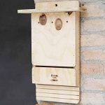 Blitzen Bat Box professionnelle murale 100% Made in Italy de la marque blitzen image 3 produit