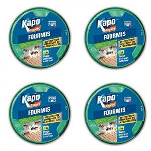 BOITE APPAT ANTI FOURMIS 10 gr KAPO lot de 4 de la marque Kapo image 0 produit