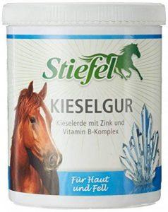 Bottes kieselguhr 1kg avec galets Terre + Zinc + Vitamine B Complexe pour chevaux u. Islandais Problèmes de Peau et fourrure | Galets Terre de la marque Stiefel image 0 produit