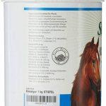 Bottes kieselguhr 1kg avec galets Terre + Zinc + Vitamine B Complexe pour chevaux u. Islandais Problèmes de Peau et fourrure | Galets Terre de la marque Stiefel image 2 produit