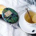 Bougie citronnelle anti moustique répulsif Insectes 330g 75 heures, 100% de cire de soja, 3 bâtons, Extérieur et Intérieur de la marque LA JOLIE MUSE image 3 produit