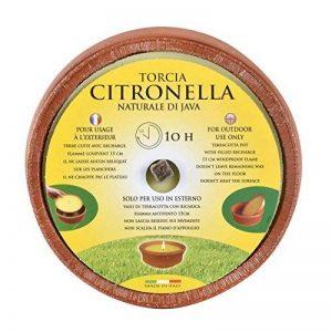 Bougie parfumée à la citronnelle, pot en terre cuite, jardins et extérieurs, parfum naturel, 10 h de la marque XSS image 0 produit