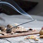 Bramble Anti mosquito Incense sticks - Gentle Fragrance with citronella. 10 packets de la marque Bramble Anti mosquito Incense sticks - Gentle Fragrance with citronella. 10 packets image 1 produit