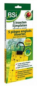 BSI Piège Englue pour Insecte de la marque BSI image 0 produit