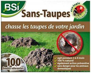 BSI Répulsif anti-taupe Boules Odorantes de la marque BSI image 0 produit