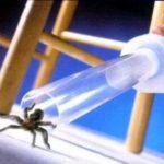 BugBuster Aspirateur d'insectes et d'araignées à piles. de la marque Bug Buster image 2 produit