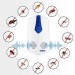 Cadrim 2Pcs Répulsif Ultrason Anti-Rongeurs Insectes Répulsifs à insectes Électronique avec une Lumière Nocturne, Anti Coquerelle Mouches Moustique Cafards Fourmis Araignées Puces (1pcs) de la marque Cadrim image 2 produit