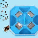 Caleçon Trappes Boîte Cockroach Bug Roach Catcher Cockroach Killer Insectes Bugs Trappes d'appât Efficace Pesticide Cuisine Restaurant Plastique réutilisable Non toxique Eco de la marque SZH-POD image 1 produit