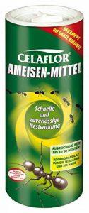 Celaflor Anti-fourmis 300g de la marque Celaflor image 0 produit