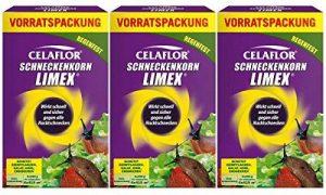 Celaflor Produit anti-limaces LIMEX 3x 1kg de conservation Contenu du de la marque Celaflor image 0 produit