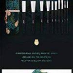 CHENG MSQ 10 Pcs Maquillage Brosses Set Fiber De Cheveux Foudre Poudre Fondation Fard À Paupières Sourcils Lèvres Pinceaux Cosmétiques Maquillage Outils Avec Sac D'artiste de la marque CHENG image 3 produit