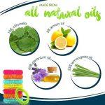 citronnelle moustique efficace TOP 12 image 2 produit