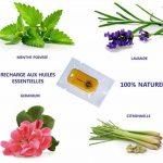 citronnelle moustique efficace TOP 9 image 3 produit