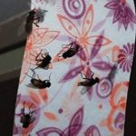 colle mouche TOP 7 image 2 produit
