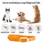 Collier anti-puces pour chien - 3 mois de protection anti-puces et de contrôle des tiques - Pour chiens chats - Taille réglable et étanche - Arrête les piqûres des parasites et les démangeaisons de la marque JUNMO image 1 produit
