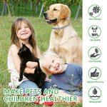 Collier Antiparasitaire Dewel 63,5cm Collier Anti-puces Tique Imperméable Anti-allergique pour Chats Chiens Animaix Durée de 8 Mois de la marque Dewel image 1 produit