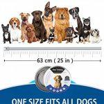 Collier antipuces, Puces et Tiques Collier pour tous les types de chiens Naturel Huile Essentielle Commercial, Taille Réglable et étanche, arrêter Pest piqûres et les démangeaisons(Gris, 63cm) de la marque ProHomer image 4 produit