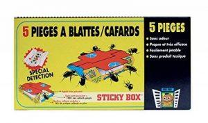 DIGRAIN Sticky Box / Piège à cafards - I8025 de la marque DIGRAIN image 0 produit