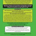 Envii Feed & Protect - Répulsif De Contrôle Anti-Limace et Escargot Sans Risque Pour Les Animaux - Fertilisant Non-Toxique et Sans Danger Pour Les Animaux (500g) de la marque Envii image 1 produit