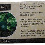 Etree limaces et escargots Caisse claire (lot de 2) de la marque E-Tree image 2 produit