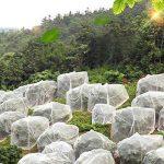 Filet anti-insectes, Gosear Insectes Moustique Moustiquaire Mesh Protection Jardin Filet pour Protéger Votre Plante Fruits Fleur 2 x 5m de la marque Gosear image 3 produit