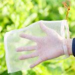 fleur contre les moustiques TOP 11 image 1 produit