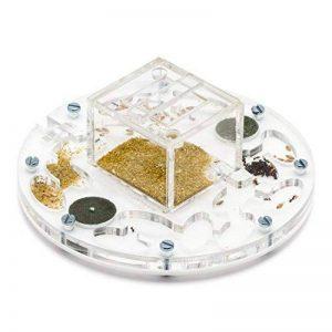 Fourmiliere Ant Farm Circle Medium (Fourmis et reine gratuites) de la marque AntHouse image 0 produit