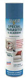 Fulgator - Anti Parasitaire - Spécial Parasites - Actif 4 Mois Sans Odeur - 400 ml (x1) de la marque Fulgator image 0 produit