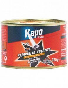 Fumigène Tous insectes - 37.5 Gr - KAPO 611441 de la marque Kapo image 0 produit