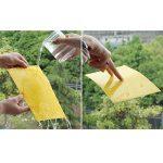 Gosear® Pièges Insectes, 20pcs Pièges Jaunes Double Face Sticky Pièges Collants Conseil pour Moustiques Pucerons Mineuses 5,91 x 9,84 Inch de la marque Gosear image 4 produit