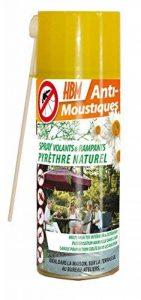 HBM Anti-Moustiques Spray Pyrèthre Naturel Manuel 250 ml avec CANULE Volants & Rampants de la marque HBM Anti-Moustiques image 0 produit
