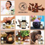 huile essentielle contre les mouches TOP 11 image 2 produit