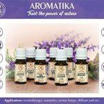 huile essentielle contre les mouches TOP 11 image 4 produit