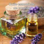 Huile Essentielle de Lavande Vraie Bio Mearome - 30ml - 100% Pure et Naturelle - HEBBD - HECT - Qualité et Fabrication Française de la marque Mearome image 2 produit